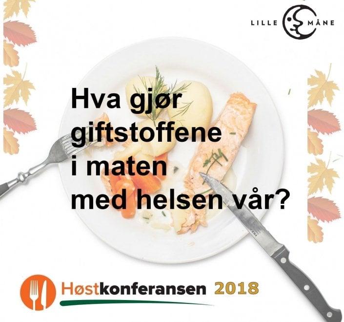 """På Høstkonferansen i år før du høre journalistene bak Morgenbladets og Harvests artikkelserie """"Mørke Motkrefter"""" om fortelle om forskning på oppdrettslaks i Norge"""