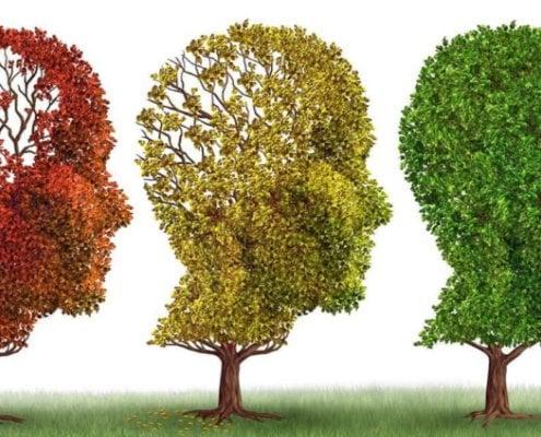 Iver Mysterud har skrevet en viktig bok om hva du kan gjøre - og hva du bør vite - om demens og Alzheimers sykdom.